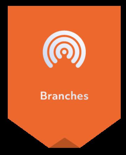 Foxiz iconen | Vertalingen | Branches